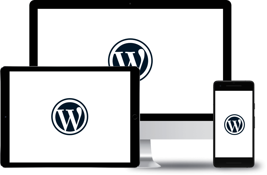 vermaze wordpress development service